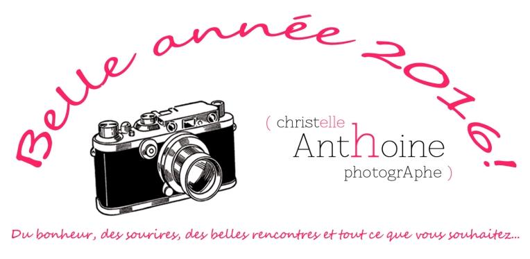 Meilleurs voeux 2016 photographe Saint-Brieuc Christelle ANTHOINE