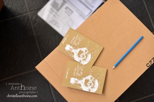 photographe-corporate-bretagne-atelier-meuble-en-cartons-icone-home-pour-bleu-pluriel-tregeux9