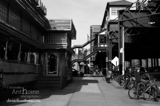photographe-tony-vaccaro-new-york-quenns-rencontre